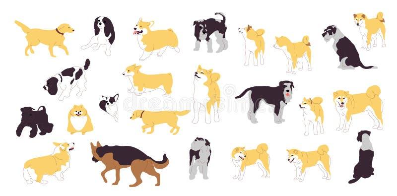 Insieme dei cani differenti Grande raccolta delle razze del cane Isolato su priorit? bassa bianca Azione piane del fumetto di sti illustrazione vettoriale