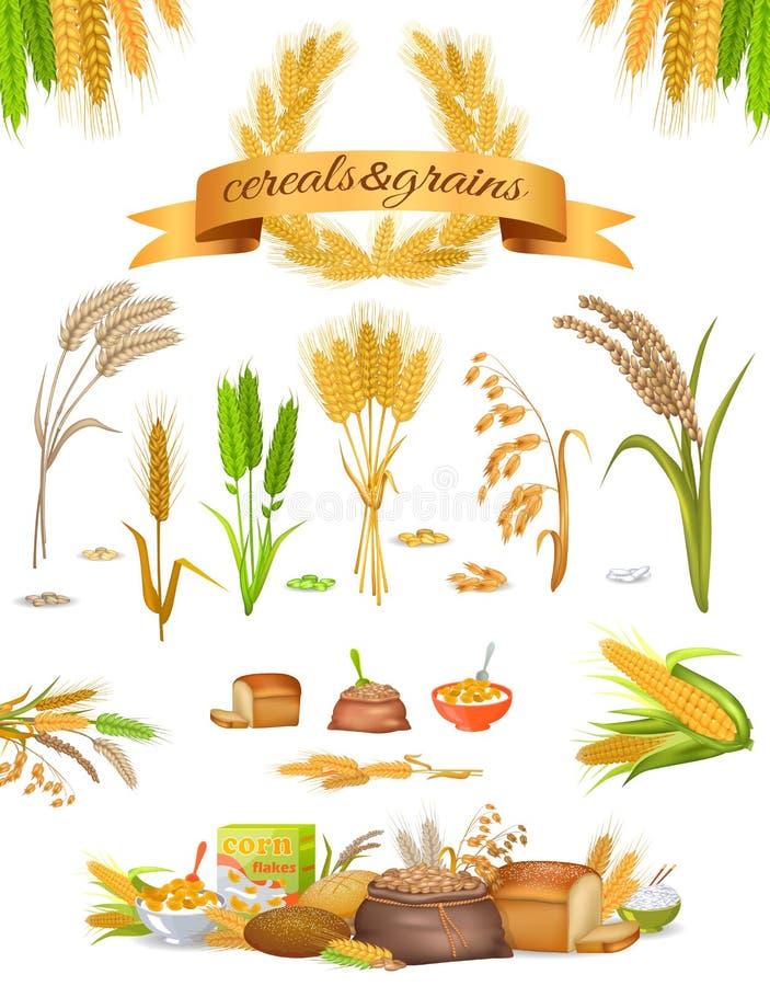Insieme dei cereali e dei grani su fondo bianco royalty illustrazione gratis