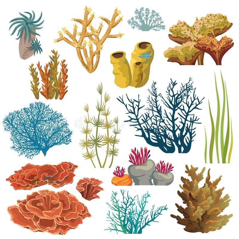 Insieme dei coralli e dei algaes royalty illustrazione gratis