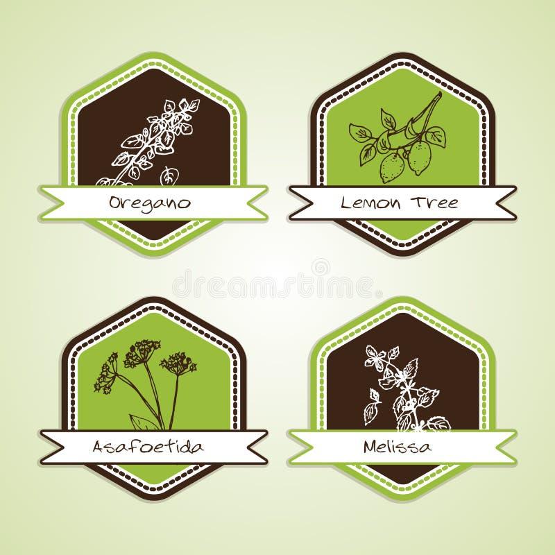 Insieme dei distintivi naturali del prodotto biologico illustrazione vettoriale