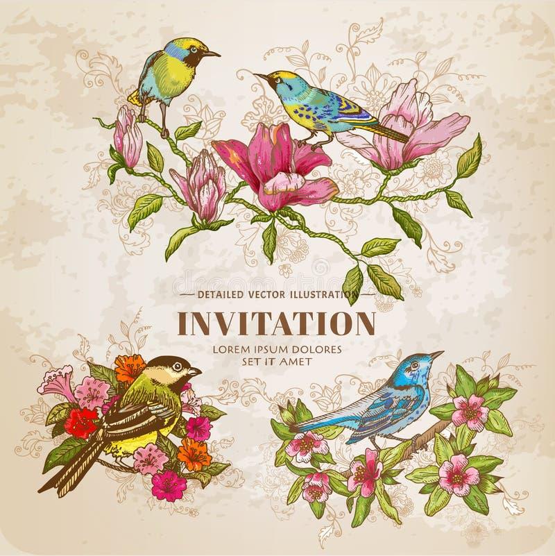 Insieme dei fiori d'annata e degli uccelli illustrazione vettoriale