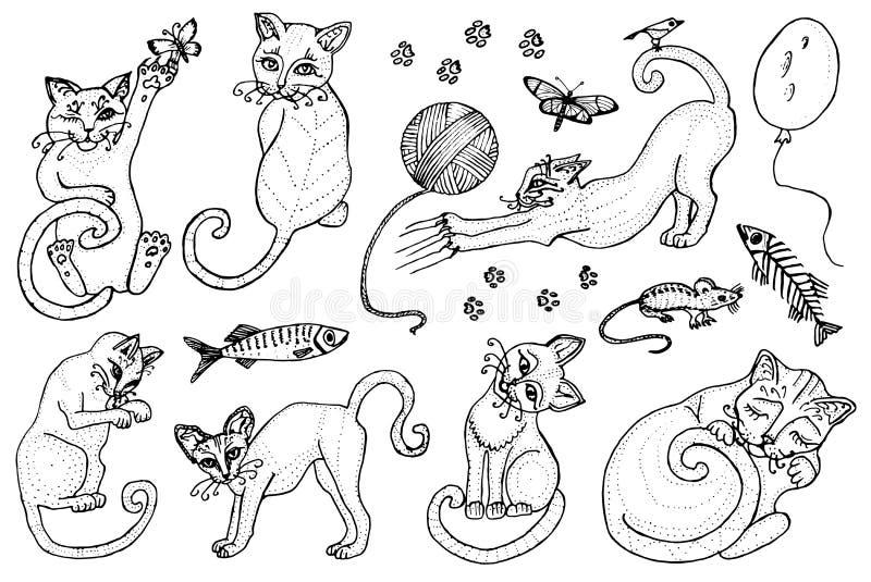 Insieme dei gatti svegli Raccolta dei gattini Icone dell'illustrazione di vettore, linea arte Animali domestici disegnati a mano  royalty illustrazione gratis