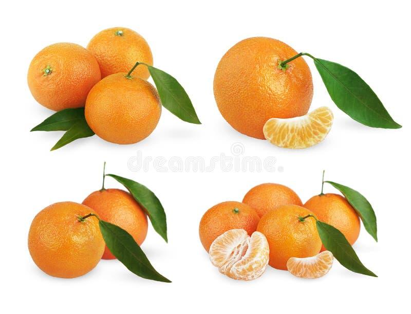 Insieme dei mandarini maturi con le foglie e le fette fotografie stock