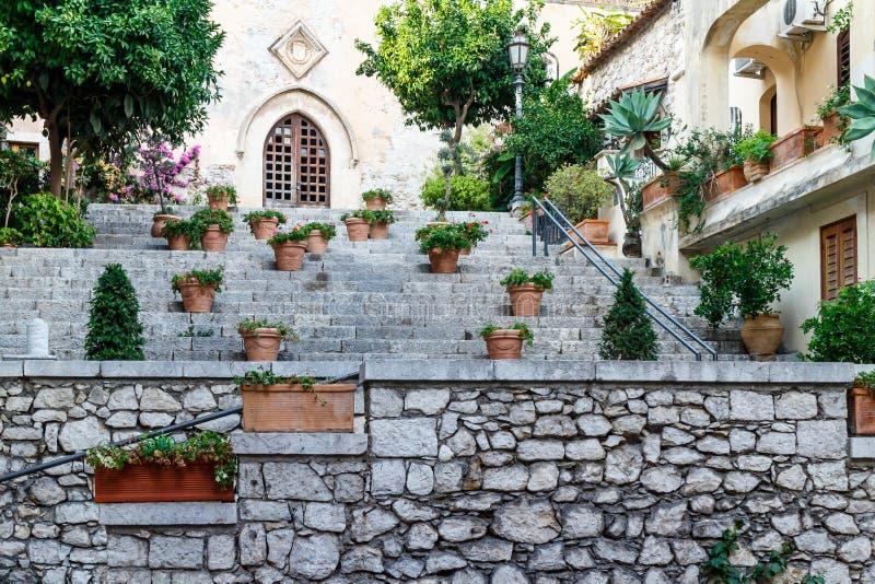 Piante in vaso decorative che crescono su un patio for Piante decorative