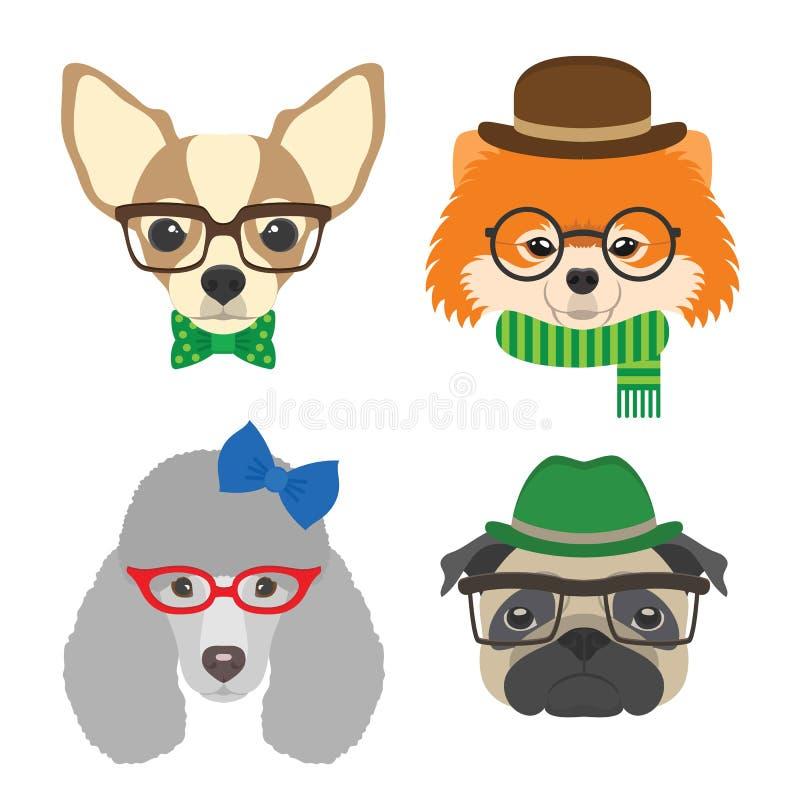Insieme dei ritratti dei cani Chihuahua, carlino, barboncino, vetri pomeranian che indossano i vetri e gli accessori nello stile  illustrazione di stock