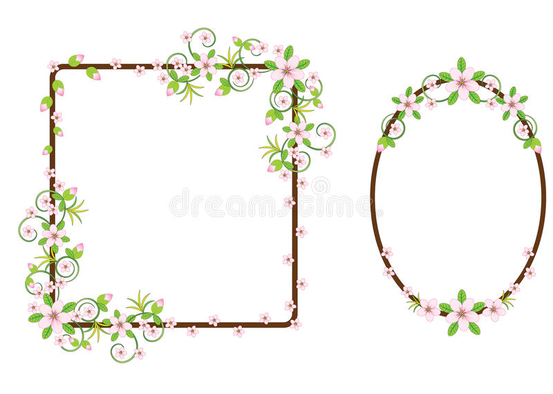 Insieme dei telai floreali illustrazione vettoriale