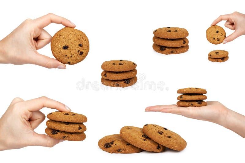 Insieme del biscotto di pepita di cioccolato, mano della donna, isolata su fondo bianco fotografie stock libere da diritti