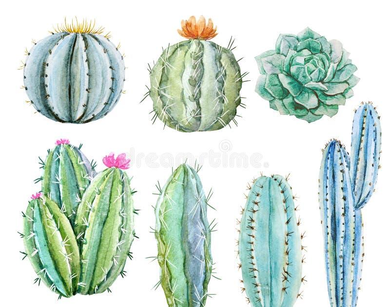 Insieme del cactus dell'acquerello illustrazione di stock