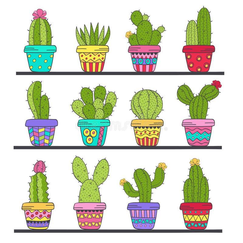 Insieme del cactus isolato in vasi sullo scaffale illustrazione di stock