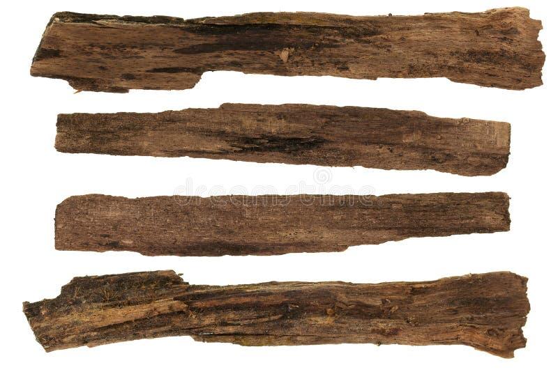 Insieme del collage del pezzo di legno secco isolato su bianco immagine stock libera da diritti