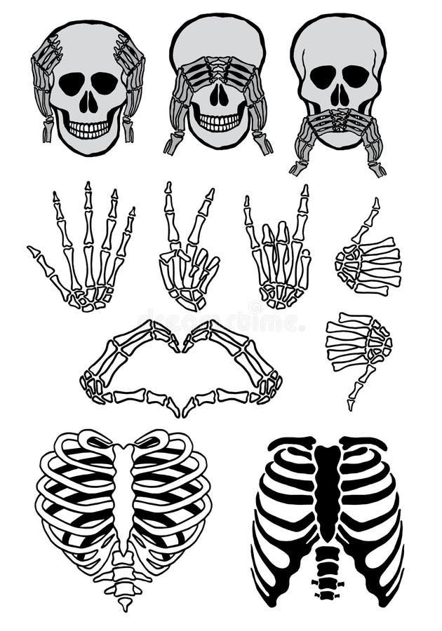 Insieme del cranio di Hallowwen, vettore illustrazione di stock