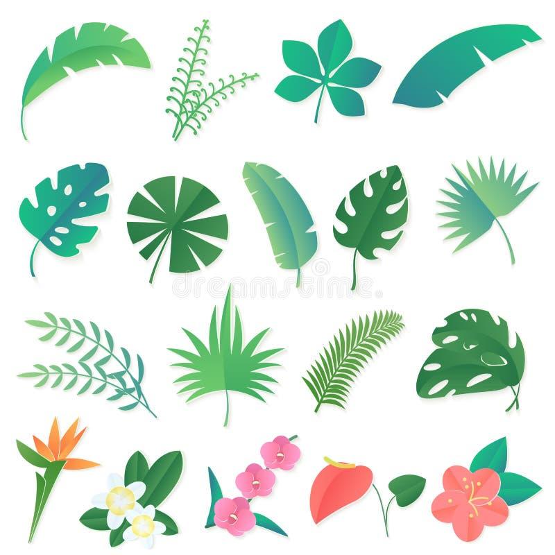 Insieme del fumetto di vettore delle foglie tropicali isolate La palma, foglia della banana, ibisco, plumeria fiorisce royalty illustrazione gratis