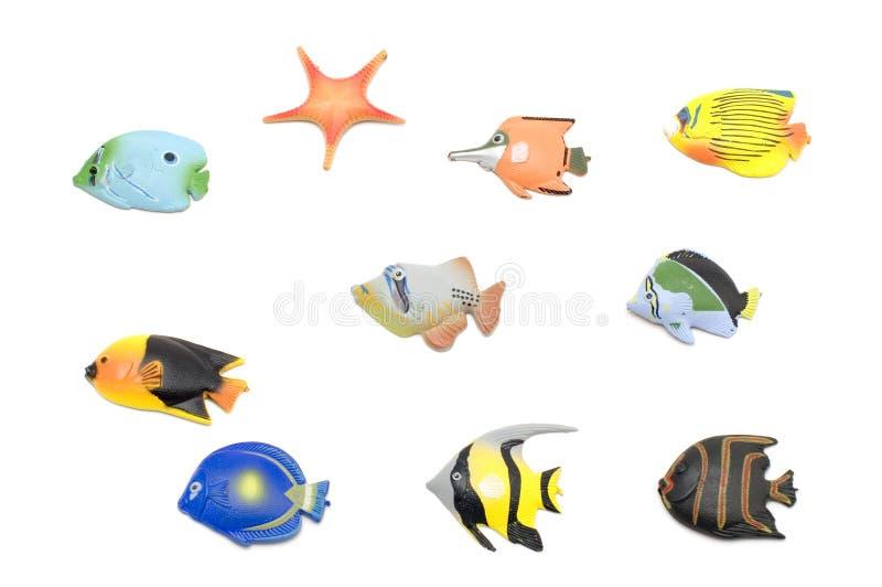 Insieme del magnete dei pesci su bianco fotografie stock