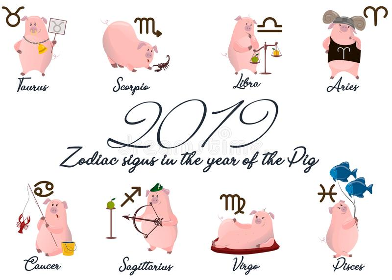 Insieme 2019 del maiale sveglio dello zodiaco del fumetto Simboli zodiacali dell'illustrazione di vettore: Ariete, Toro, Gemelli, illustrazione di stock