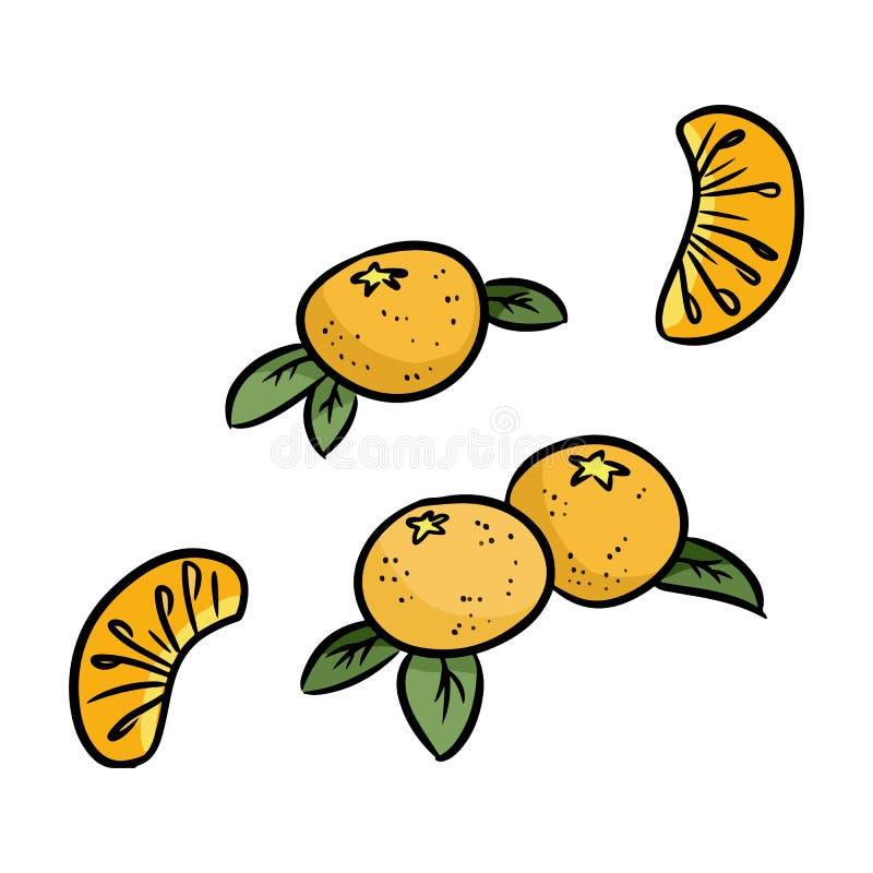 Insieme del mandarino degli scarabocchi isolati dell'autoadesivo Mandarini arancioni illustrazione vettoriale