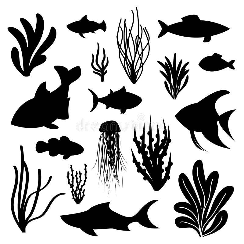 Insieme del pesce di mare e dell'alga delle siluette di vettore vita marina e illustrazione di stock