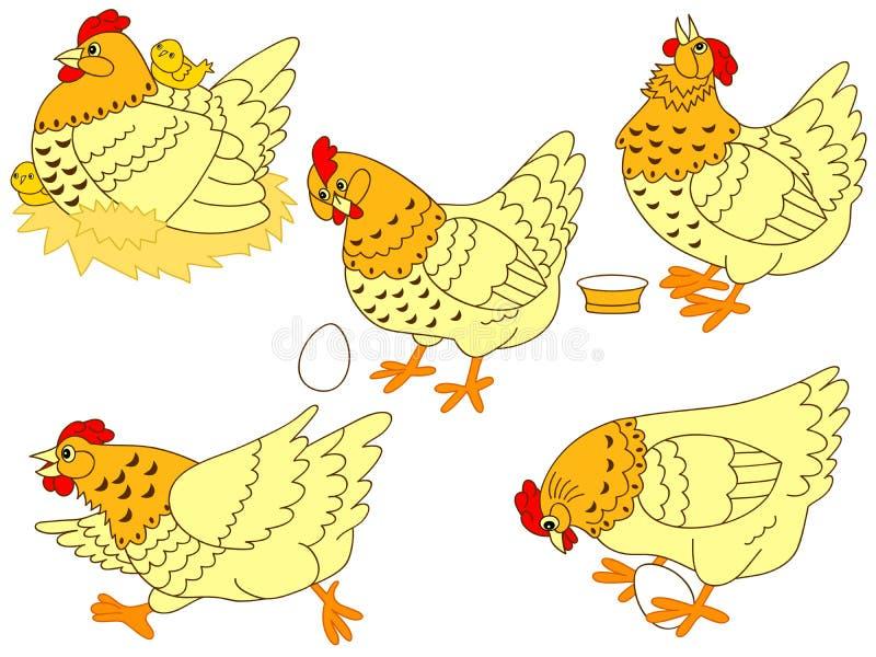 Insieme del pollo di vettore illustrazione vettoriale