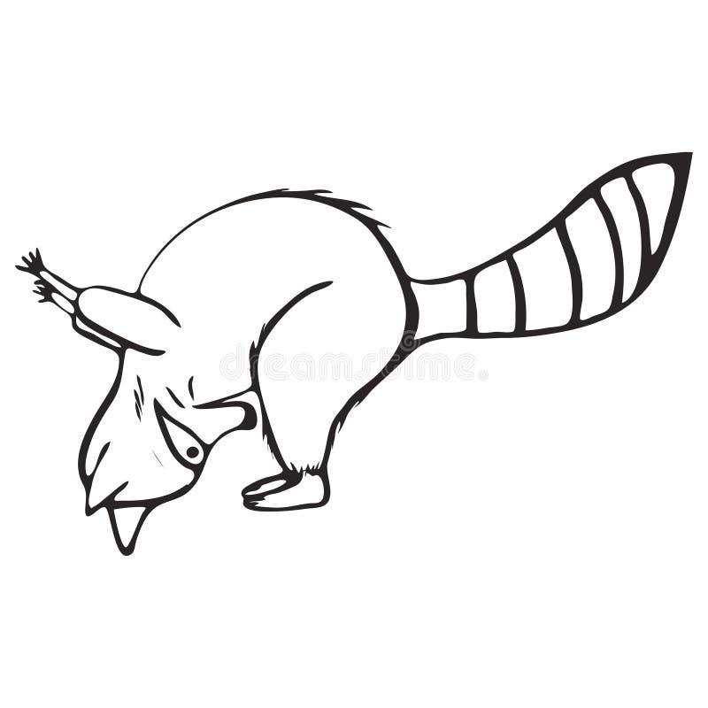 Insieme del profilo di scarabocchio del procione fare yoga illustrazione vettoriale