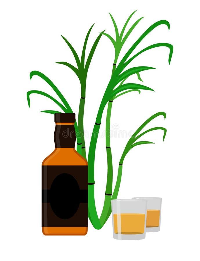 Insieme del rum Bevanda dell'alcool, vetri, colpi, bottiglia del rum, canna da zucchero illustrazione vettoriale