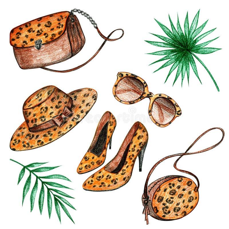 Insieme dell'abbigliamento del leopardo royalty illustrazione gratis