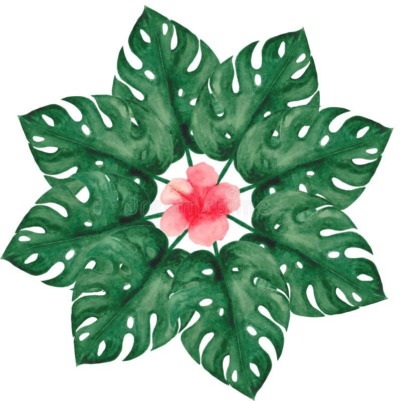 Insieme dell'acquerello con le foglie ed i fiori tropicali illustrazione di stock