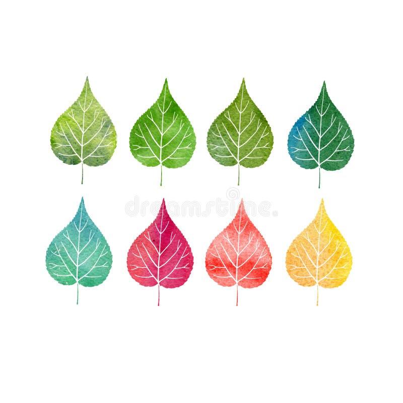 Insieme dell'acquerello delle foglie dell'albero royalty illustrazione gratis