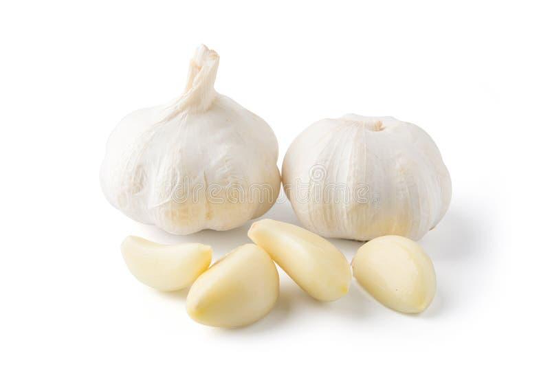 Insieme dell'aglio isolato su fondo bianco immagine stock