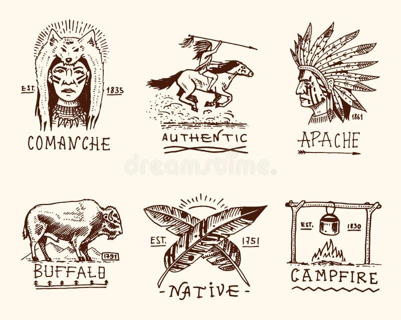 Insieme dell'annata incisa, disegnato a mano, vecchio, delle etichette o dei distintivi per l'indiano o il nativo americano bufal illustrazione vettoriale