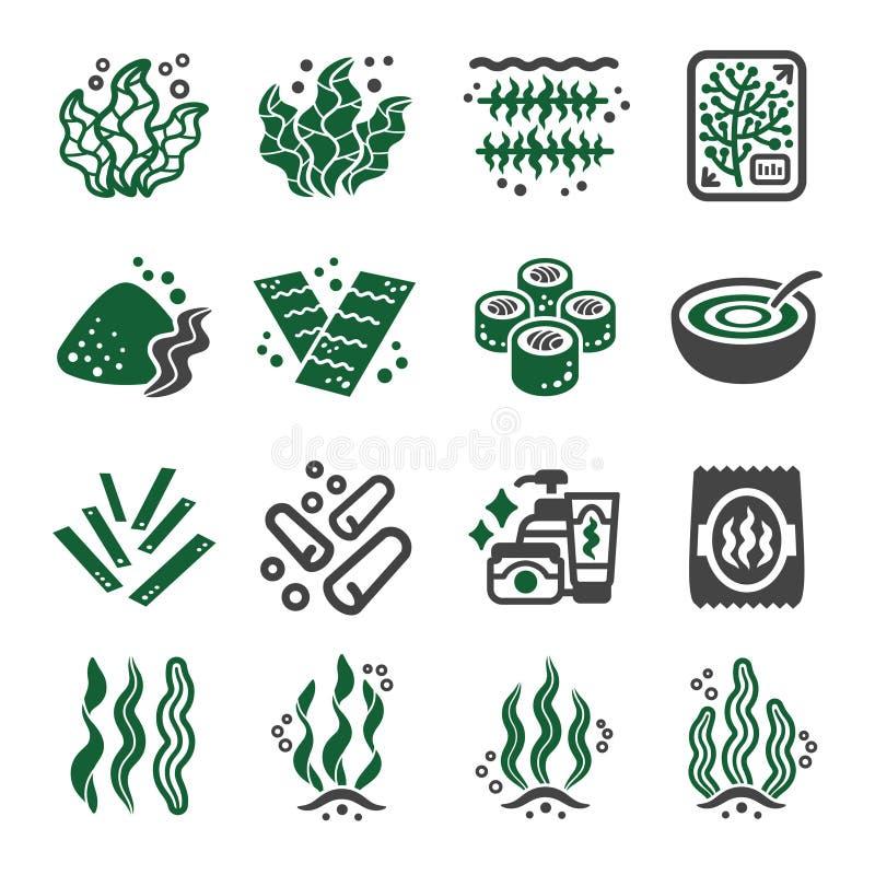 Insieme dell'icona dell'alga illustrazione vettoriale