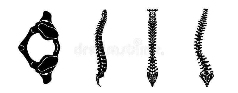 Insieme dell'icona della spina dorsale, stile semplice illustrazione vettoriale