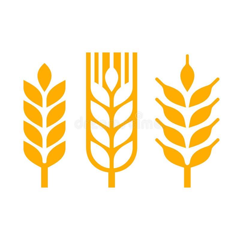 Insieme dell'icona di Spica dell'orecchio del grano Vettore illustrazione vettoriale