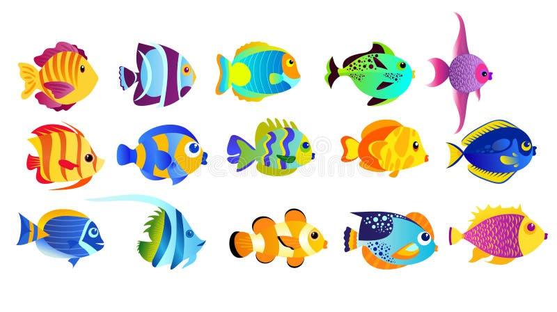 Insieme dell'illustrazione di vettore dei pesci tropicali di colori luminosi isolati su fondo bianco nello stile piano del fumett illustrazione vettoriale