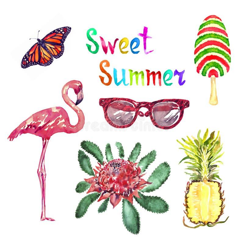 Insieme dell'illustrazione isolato acquerello dolce di estate, farfalla di monarca, vetri, gelato a strisce, fenicottero, waratah illustrazione vettoriale
