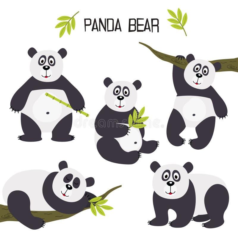 Insieme dell'orso di panda illustrazione di stock