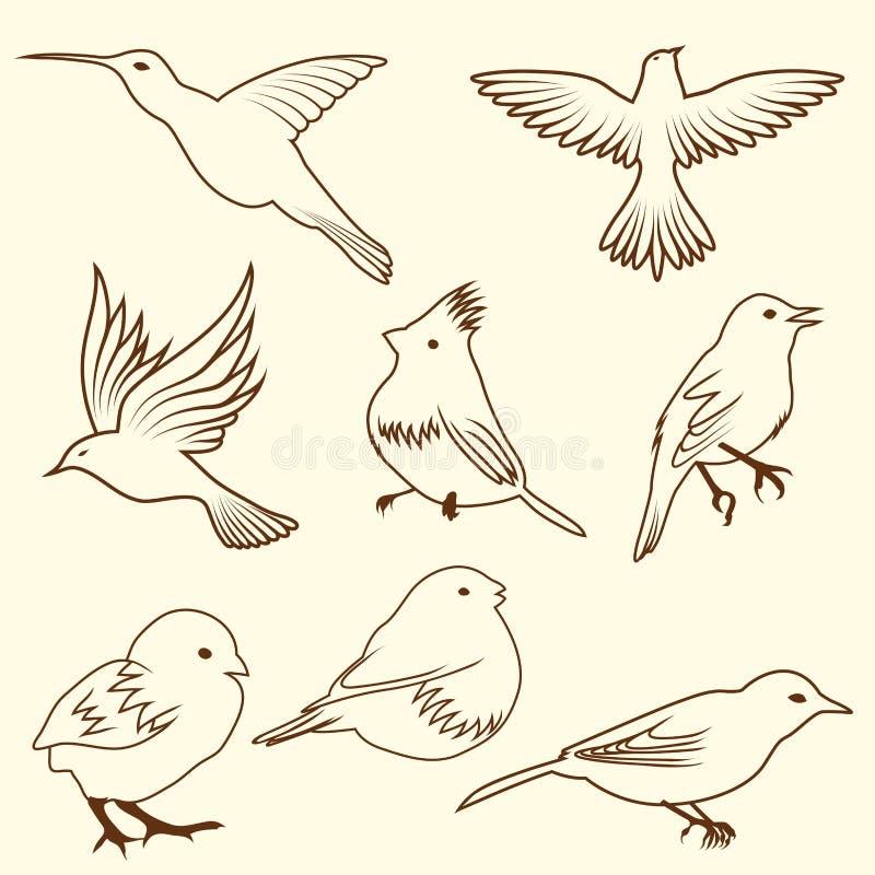 Insieme Dell Uccello Di Abbozzo Del Differnet Fotografia Stock
