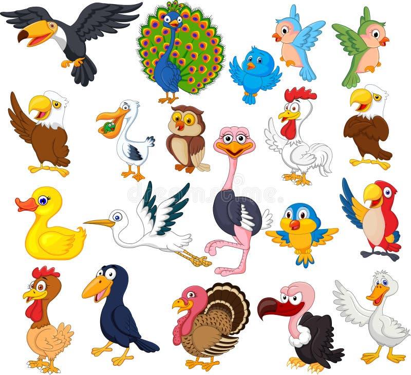 Insieme della raccolta dell'uccello del fumetto royalty illustrazione gratis