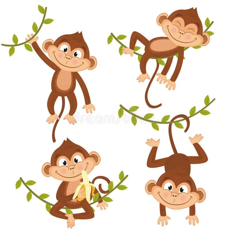 Insieme della scimmia isolata che appende sulla vite illustrazione di stock