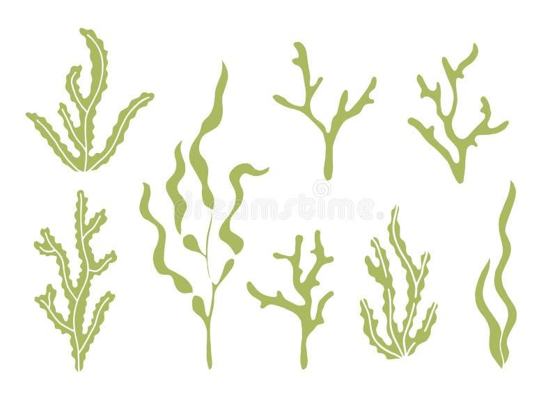 Insieme della siluetta di vettore dell'alga royalty illustrazione gratis