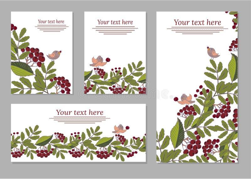 Insieme delle carte, manifesti, alette di filatoio con gli ornamenti floreali Fiorisce gli elementi illustrazione di stock