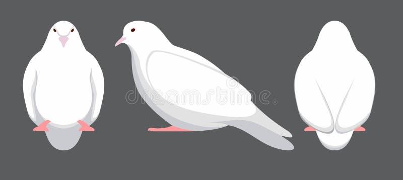 Insieme delle colombe bianche Illustrazione di vettore illustrazione vettoriale