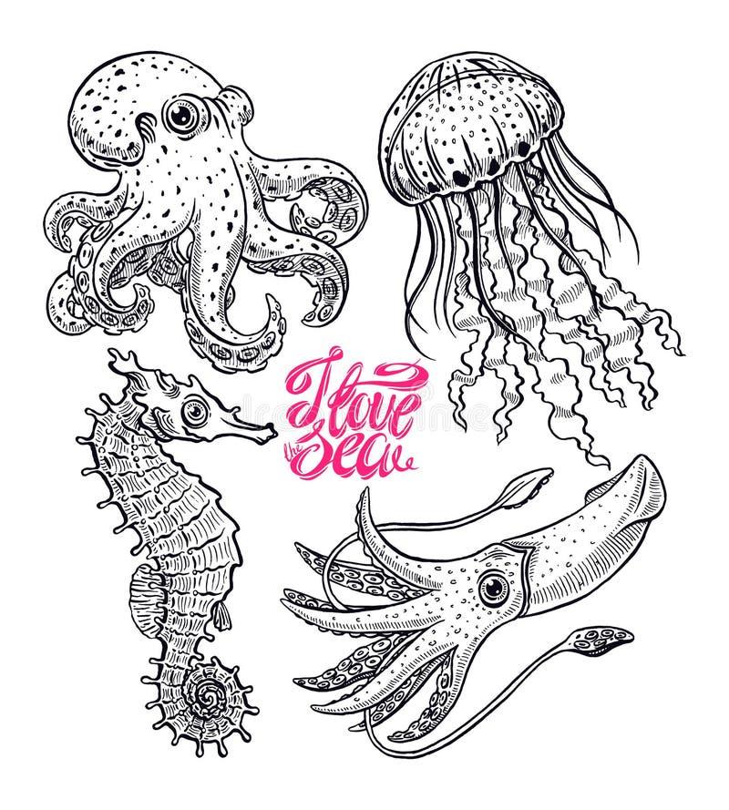 Insieme delle creature del mare illustrazione vettoriale