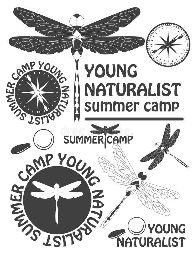 Insieme delle etichette d'annata della libellula, dei distintivi e degli elementi di progettazione Vettore royalty illustrazione gratis