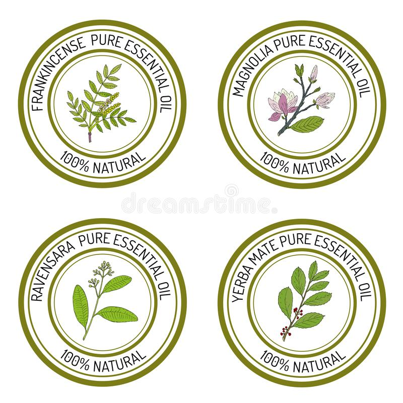 Insieme delle etichette dell'olio essenziale royalty illustrazione gratis