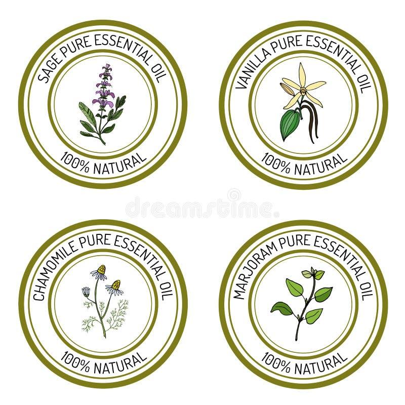 Insieme delle etichette dell'olio essenziale: salvia, vaniglia, camomilla, maggiorana illustrazione di stock