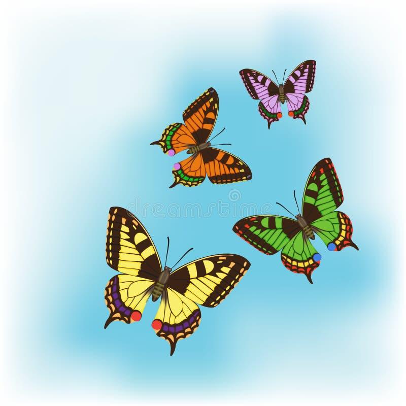 Quattro farfalle differenti fotografia stock