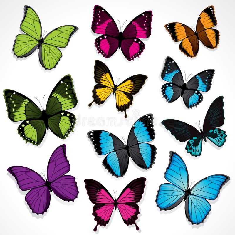 Insieme delle farfalle variopinte illustrazione vettoriale