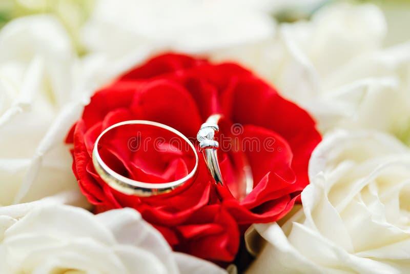 Insieme delle fedi nuziali e bianca primo piano preso in rosa rossa Arco della stella blu con il nastro blu (involucro di regalo) fotografia stock