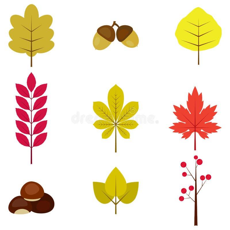 Insieme delle foglie e delle bacche di autunno variopinte Isolato su priorit? bassa bianca Stile piano del fumetto semplice Illus illustrazione di stock