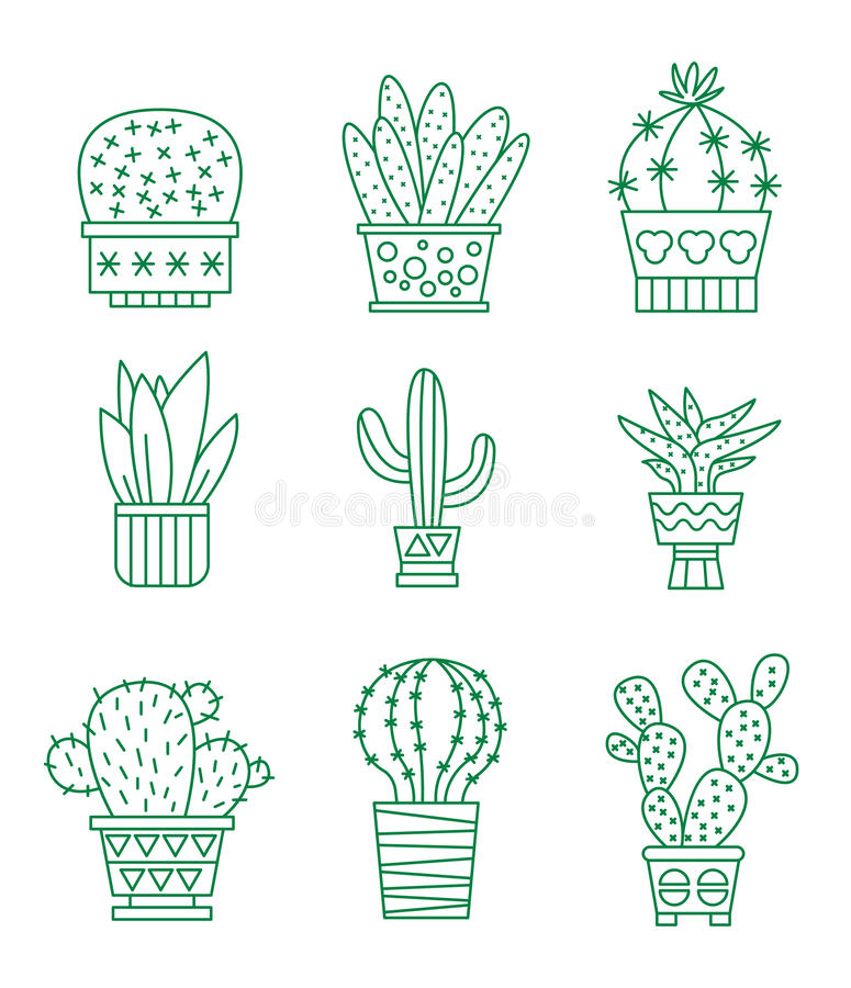 Insieme delle icone del cactus di vettore illustrazione vettoriale