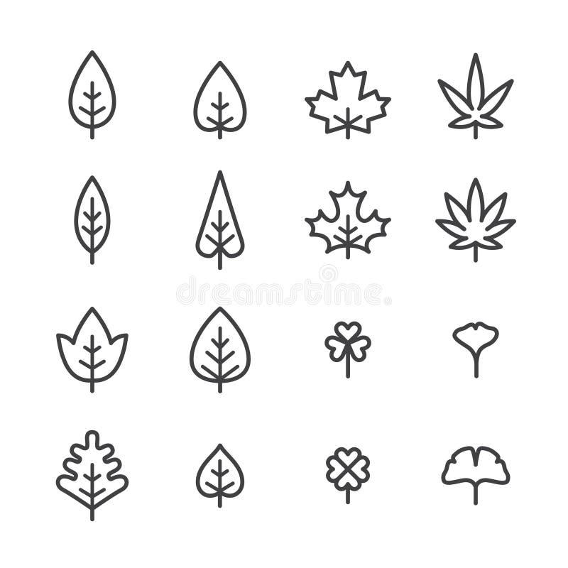 Insieme delle icone di vettore delle foglie, linea stile sottile piana Profilo della foglia nelle forme differenti illustrazione vettoriale